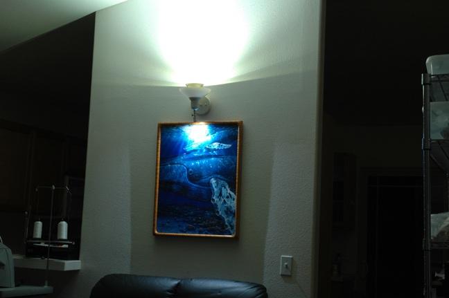 12v led lighting aloadofball Image collections